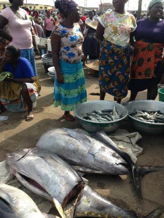 Ghana Nima Tours: Elmina Fish Market