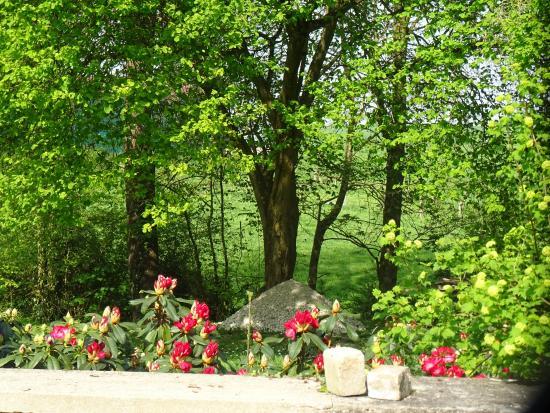 Moulin du Ru : Rhododendrons en fleurs