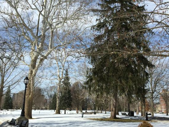 Victoria Park : Vista geral