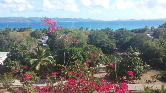 Perfect Pineapple Guest Houses: View from our balcony 1