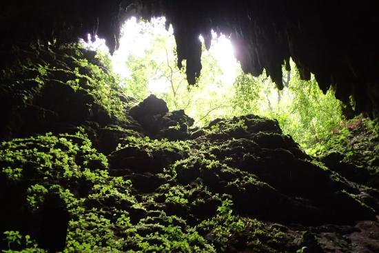 Parque de las Cavernas del Rio Camuy