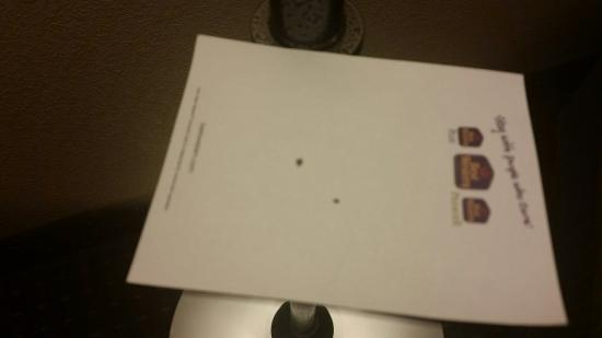"BEST WESTERN Port Columbus: Nasty ""White"" spots on chair and dead bugs in our room"