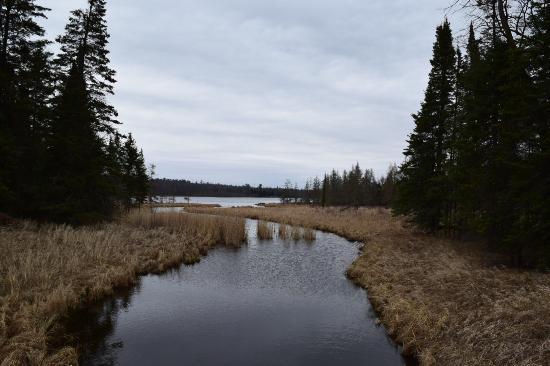 Wilderness Drive: Lake Itasca