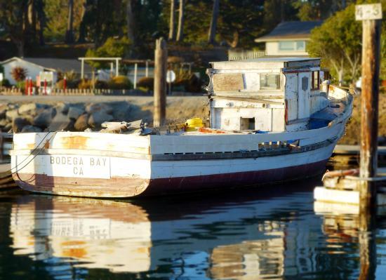 Porto Bodega Marina & RV Park: Standing in the marina, with RV park entrance behind the boat