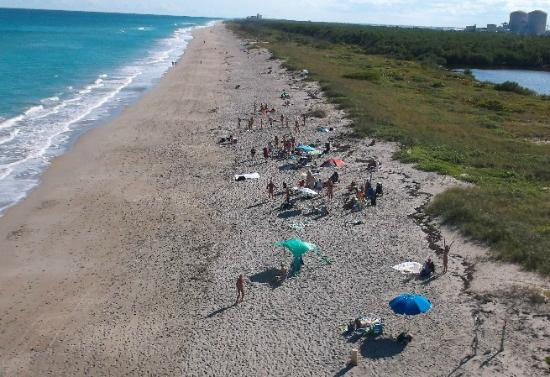 Isla Hutchinson, FL: Aerial view of Blind Creek Beach, clothing-optional section