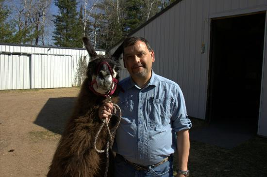Storybook Farm Llama Trekking B&B: Me, with llama!