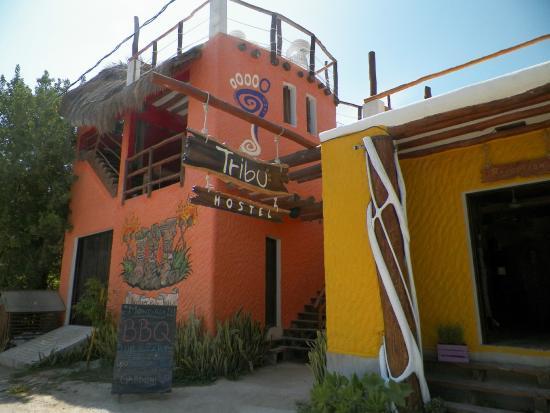 Tribu Hostel: Hotel