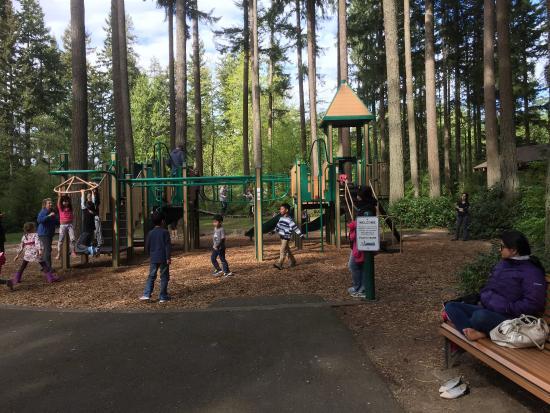 Pine Lake Park: photo0.jpg