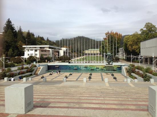 Universidad de Concepcion: El Foro