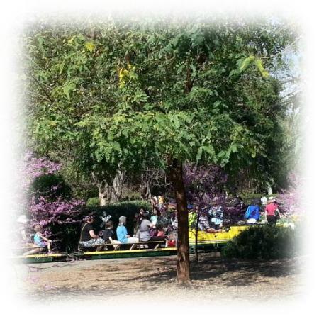 Descanso Train Picture Of Descanso Gardens La Canada Flintridge Tripadvisor