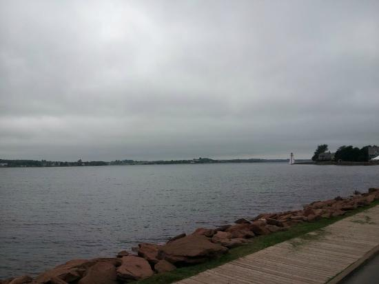 Harbour Hippo: view from part of tour