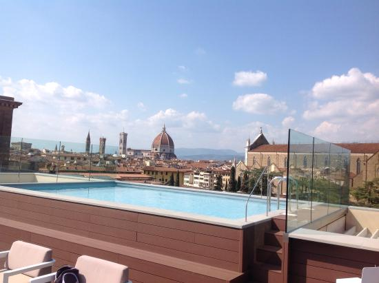 Piscine sur le toit foto di plaza lucchesi hotel for Hotel nice piscine sur le toit