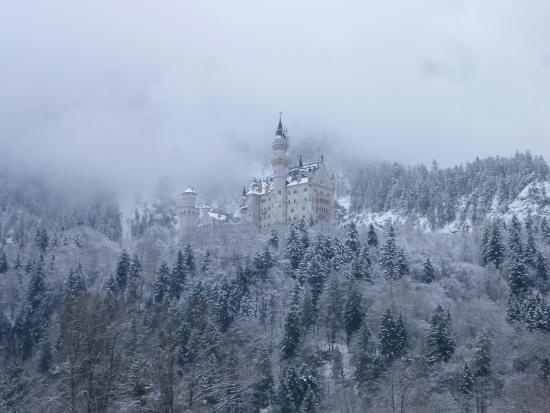 Haus Magnolia: Castello di neuschwanstein