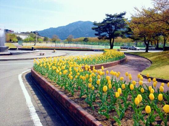 Taman Hidagawa