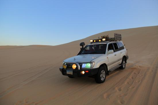 White Shark Travel-Tours: In the desert close to Siwa