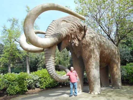 A big big elephant picture of parc de la ciutadella for Elephant barcellona