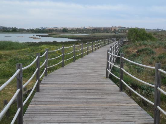 Praia dos Salgados : Bd walk up from beach