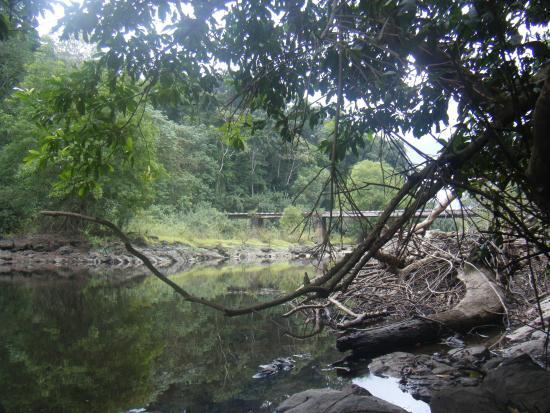 South Region, Camerun: Bongola Bridge