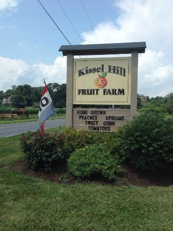 Kissel Hill Fruit Farm