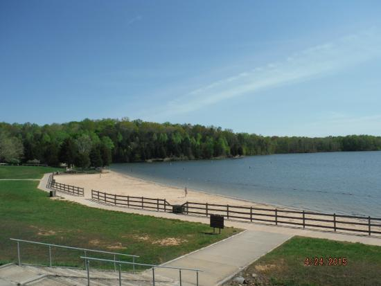 Beach picture of lake anna state park spotsylvania for Lake anna fishing