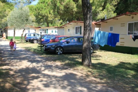 Camping Toscolano: Территория кемпинга, парковка