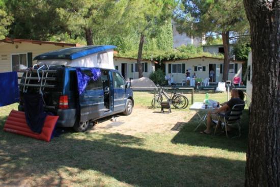 Camping Toscolano: Территория кемпинга