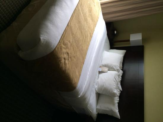 Comfort Suites Harvey : Comfortable Bed/Clean Linen