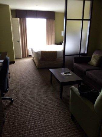 Comfort Suites Harvey: View of Clean Room