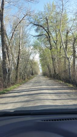 Gallatin River Lodge: Road to Lodge