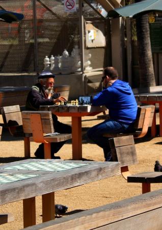 International Chess Park: Game on