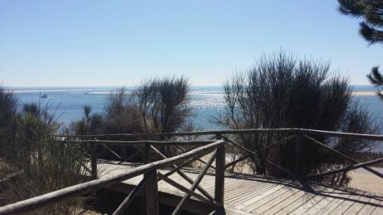 Territorio Activo: Albergue Rural Territorio Del Gato: Playas cercanas