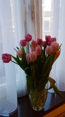 Heemskerk Suites- Adults only: tulips in the kitchen