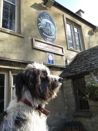 The Fox Inn: Chester the Concierge