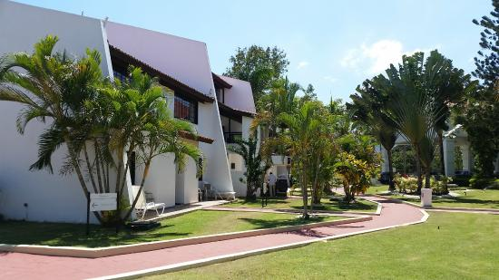 BlueBay Villas Doradas Adults Only: Rooms