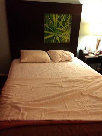 Super 8 Mount Laurel: Bed
