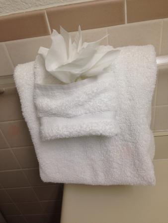 Best Western Carlsbad by the Sea: None washing washcloth??