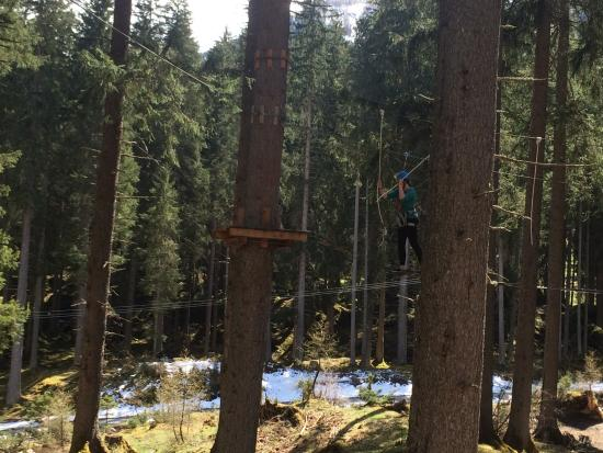 X-Fun Rauris Og: up in the trees