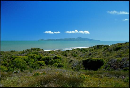 Kapiti Coast, Nowa Zelandia: Beach at Queen Elizabeth Park