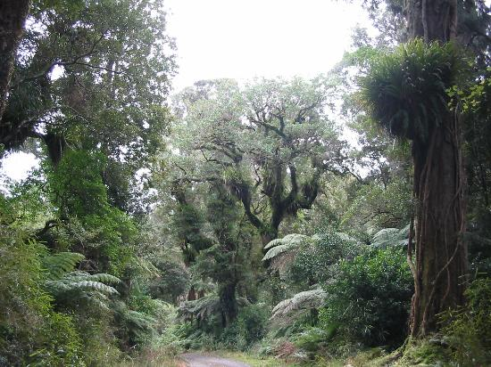 Wainuiomata Recreation Area