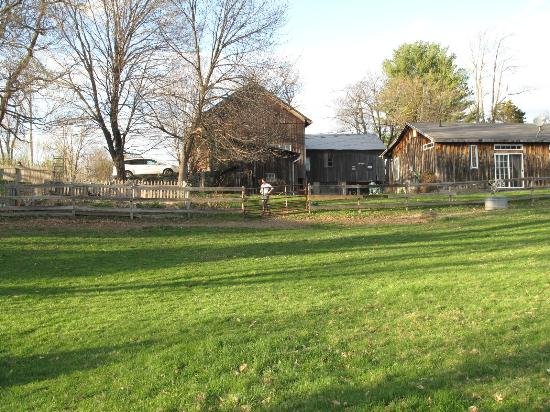 MeadowLark Farm Bed and Breakfast: pasture with work barn, stable and cottage behind