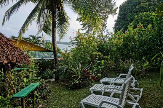 Beverly's Hill Guest House: Garden