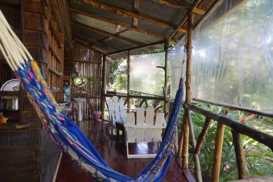 Beverly's Hill Guest House: Hammocks, relax and feel welcomed