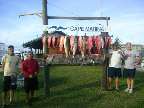 Arts Adventures - Private Charters: Snapper Season July 2014