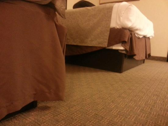 Best Western Danville Inn: The far bed's skirt -- this is  WTF moment. What housekeeper does this?
