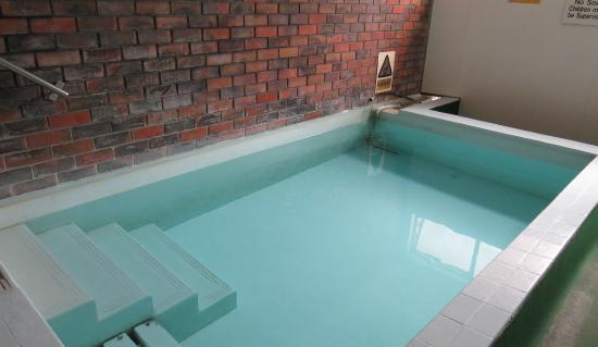 Kuirau Park Motor Lodge: Thermal Mineral Pool