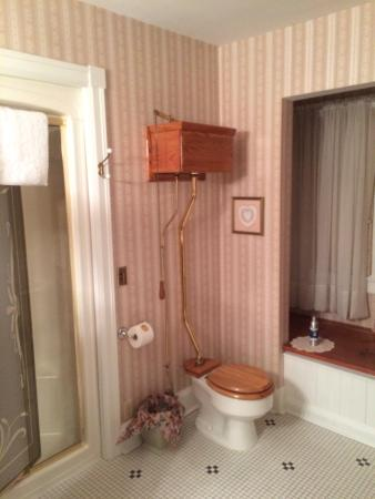 Fortville, IN: Pull chain toilet :)