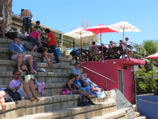 Blue Rock Adventure Park: Great spectator spot