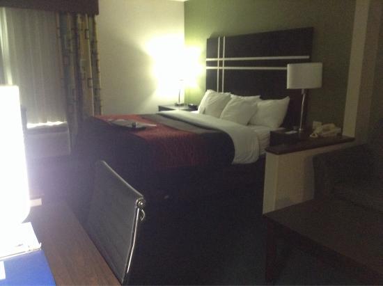 Comfort Inn & Suites: Nice looking king bed