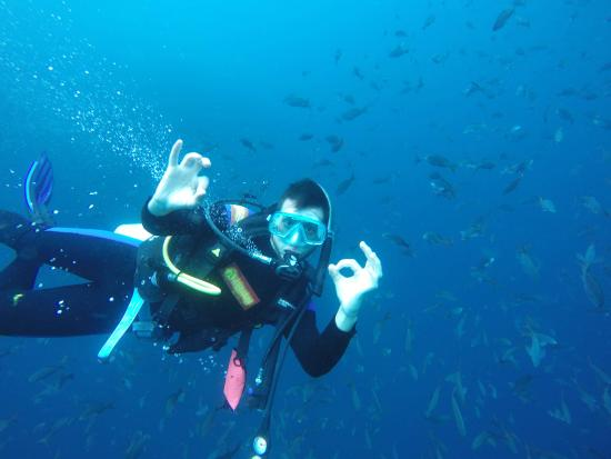 Diving With Galapagos Underwater Exploration