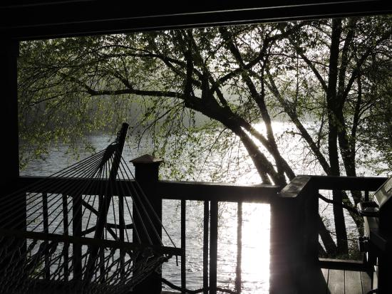 Asheville River Cabins: Morning view